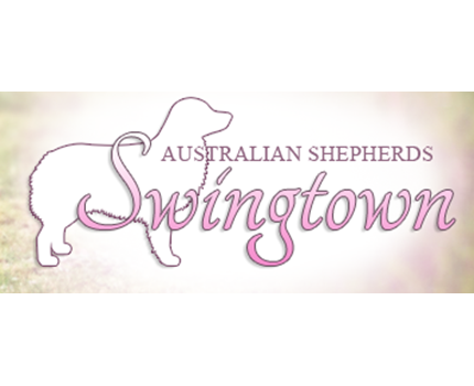 Swingtown Aussieleads