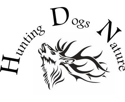 Hunting Dogs Nature